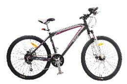 Xe đạp thể thao - Reebok