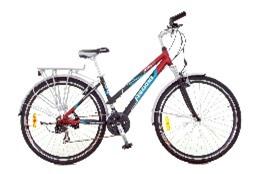 Xe đạp thể thao - AMT 48 Nữ (27