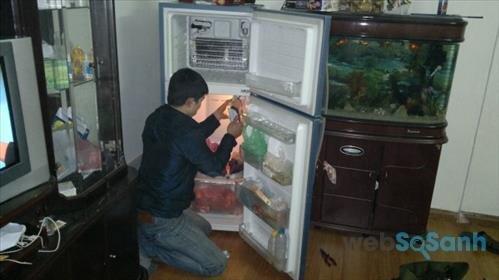 tủ lạnh chạy liên tục không ngừng