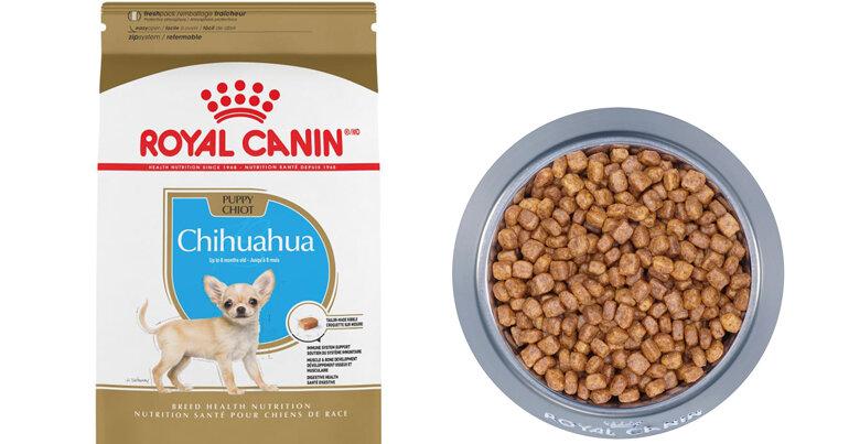 Thức ăn cho chó con Royal Canin Chihuahua Puppy