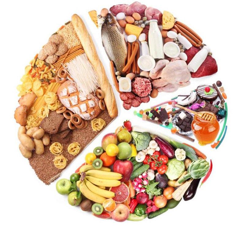 Các nhóm dinh dưỡng và thức ăn chó becgie Đức cần cung cấp hàng ngày