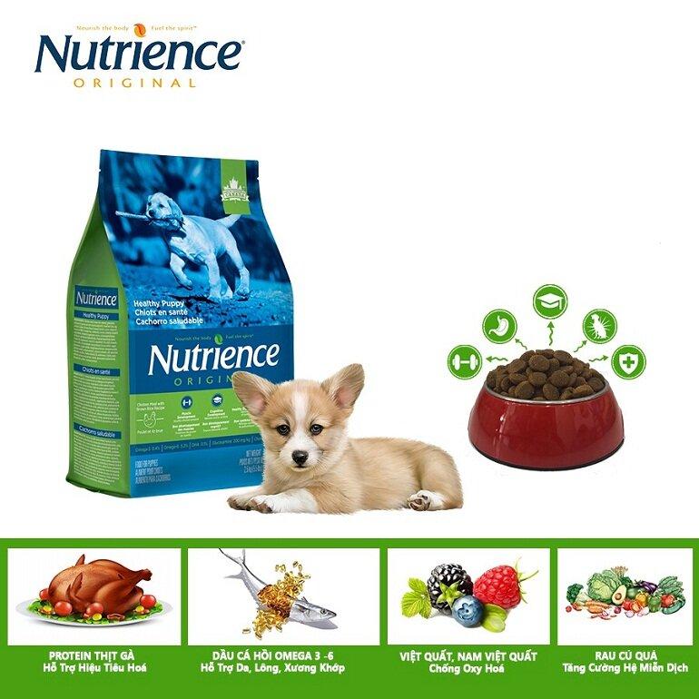 Thức ăn khô cho chó con Nutrience