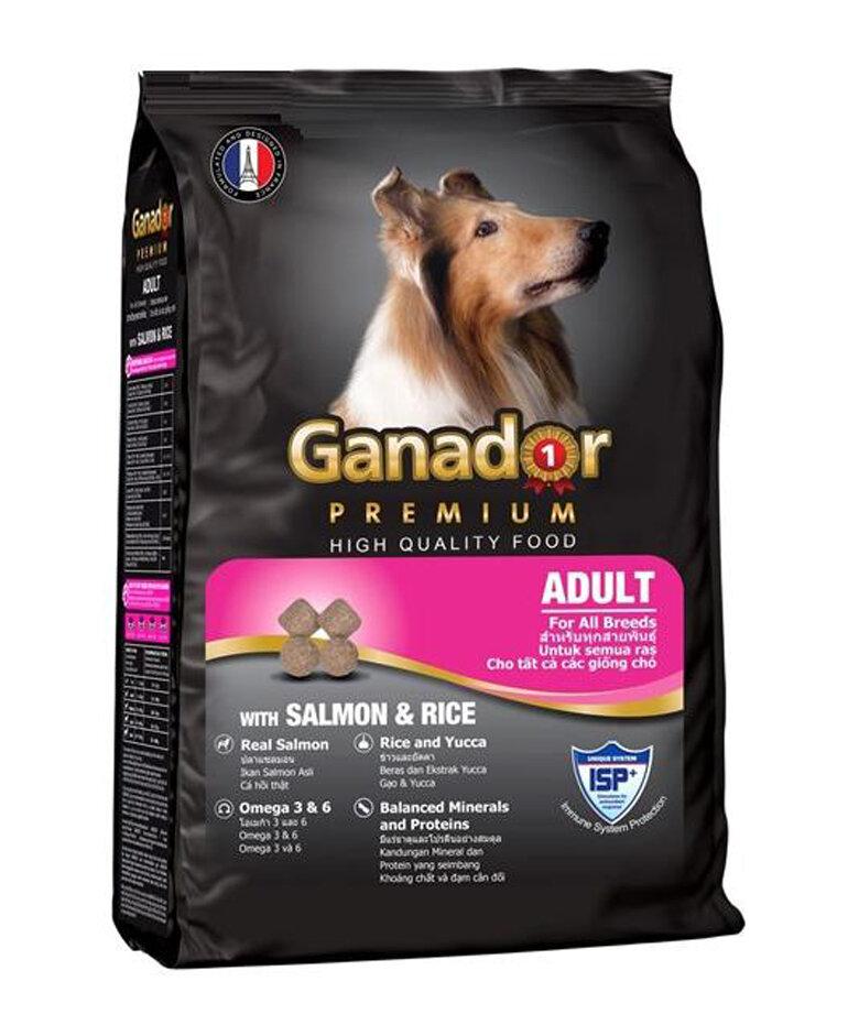 Thức Ăn Hạt Khô Cho Chó Con Và Chó Lớn Ganador 10kg - chó lớn vị cá hồi