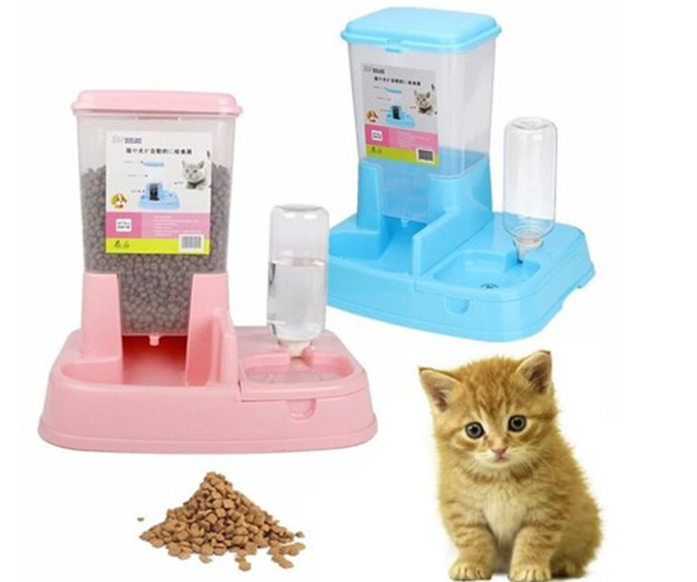 Khay ăn uống tự động cho chó mèo