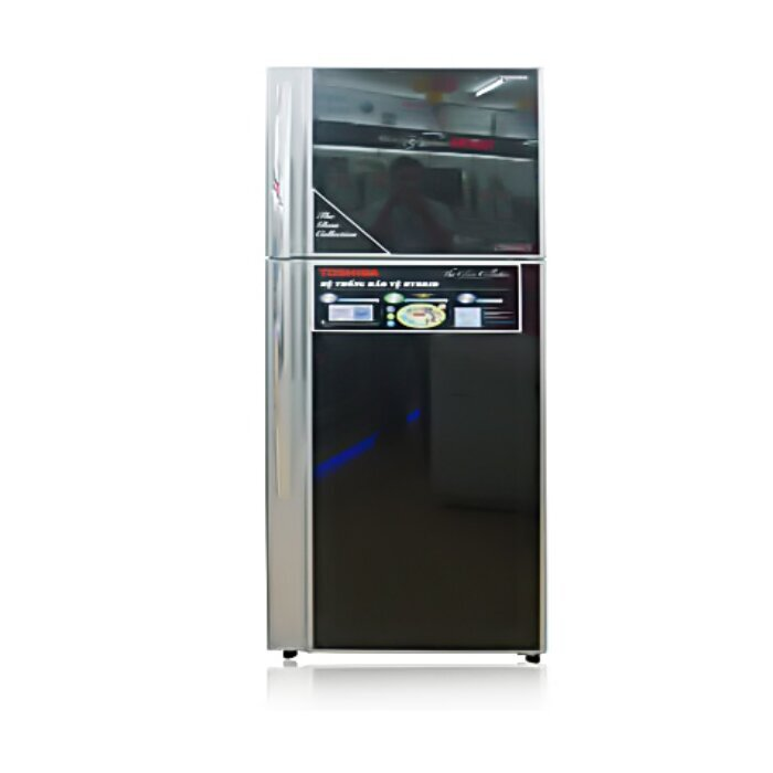 Tủ lạnh Toshiba RG41FVPD - 2 cửa