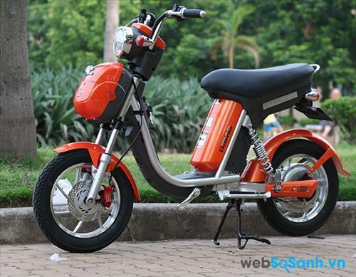 Giá xe đạp điện Nijia