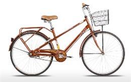 Xe đạp Jett - JETT JARVIS 2014 COP