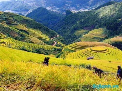Cảnh đẹp thơ mộng ở SaPa