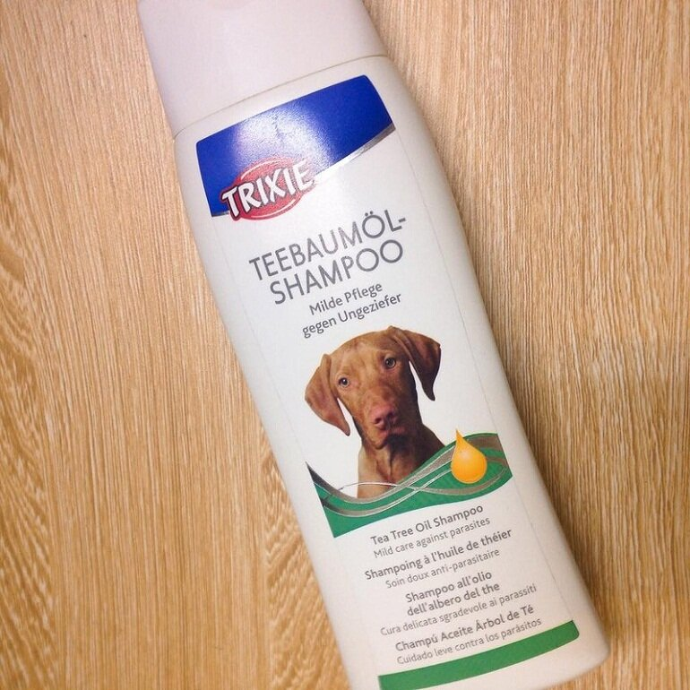 Sữa tắm cho chó Poodle nâu đỏ - Trixie