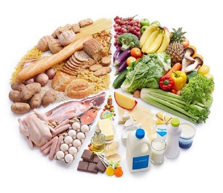 Chó becgie Đức cần cung cấp chất đạm Protein, chất xơ, chất béo, vitamin và khoáng chất, tinh bột.