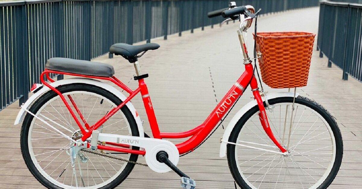 Mua xe đạp trẻ em 10 tuổi cần lưu ý gì để chọn được loại tốt nhất?