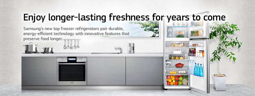 Tủ lạnh Inverter RT25FAJBDSA/SV