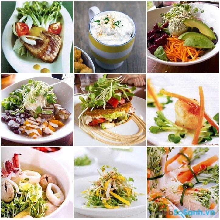 Các món ăn làm từ rau mầm (nguồn: internet)