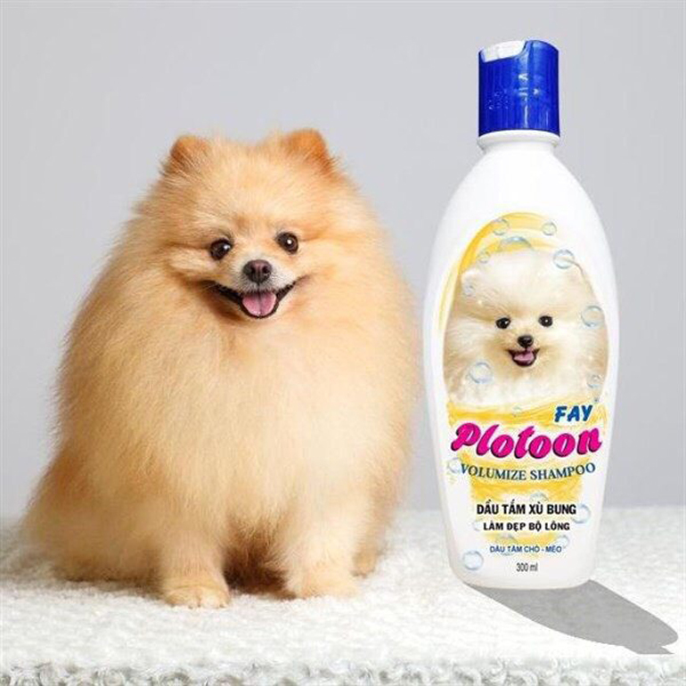 Sữa tắm cho chó xù Fay Plotoon có mức giá phải chăng