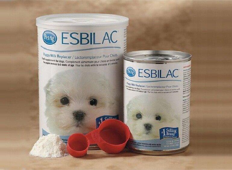 Esbilac- thương hiệu sữa cho chó nổi tiếng thế giới