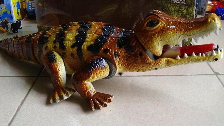 Đồ chơi cá sấu mô hình