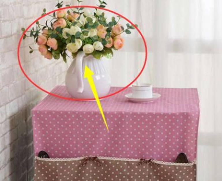 Đặt lọ hoa, chậu hoa hoặc chậu cây cảnh lên nóc tủ lạnh