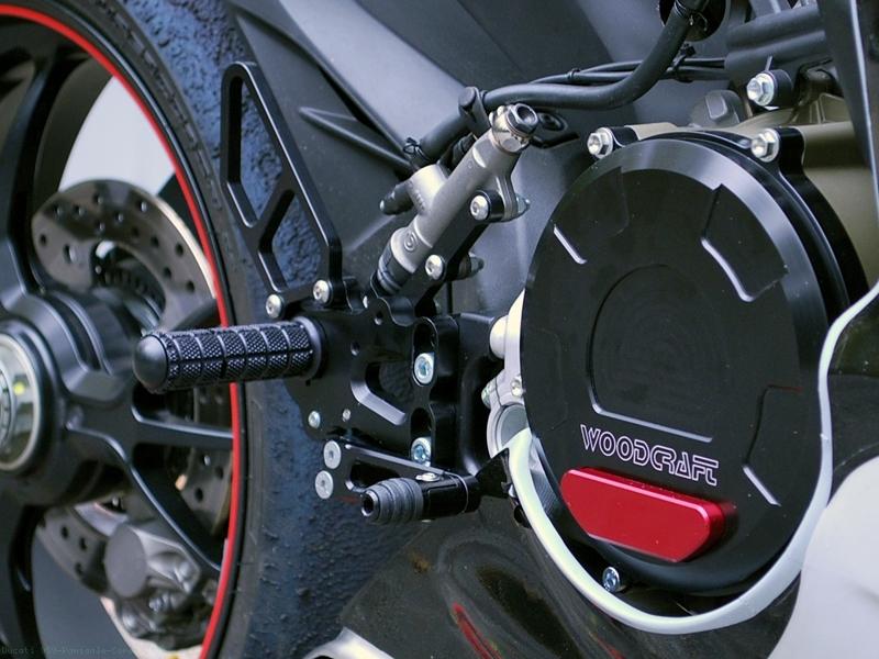 Ducati 959 Panigale động cơ Superquadro đầu tiên đạt chuẩn khí thải Euro 4