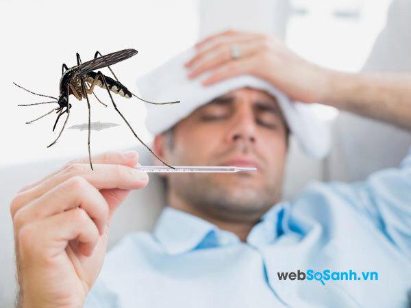 Với nhiều chủng virus, do đó một người có thể mắc sốt xuất huyết nhiều lần trong đời