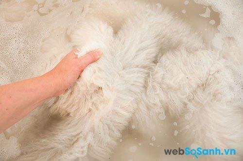 Dùng chất tẩy rửa không kiềm, dành riêng cho chăn lông, và nhẹ nhàng vò sạch chăn lông cừu