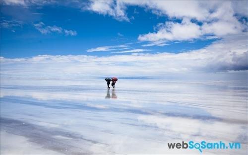 Cùng nhau đi bộ trên cánh đồng muối ,cảnh tượng như dạo trên mây vậy