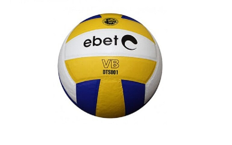 Banh bóng chuyền Ebete DT S001