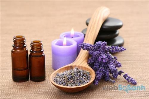 Hoa oải hương không những giúp tinh thần con người trở nên thoải thoải mái mà còn có tác dụng trong việc trị mụn