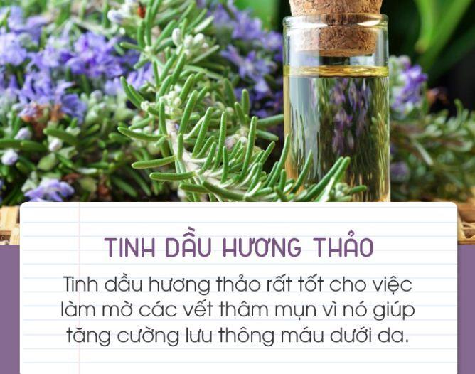 Top 5 tinh dầu trị mụn trị thâm tốt nhất hiện nay cùng cách sử dụng chi tiết từng loại   giamcanlamdep.com.vn