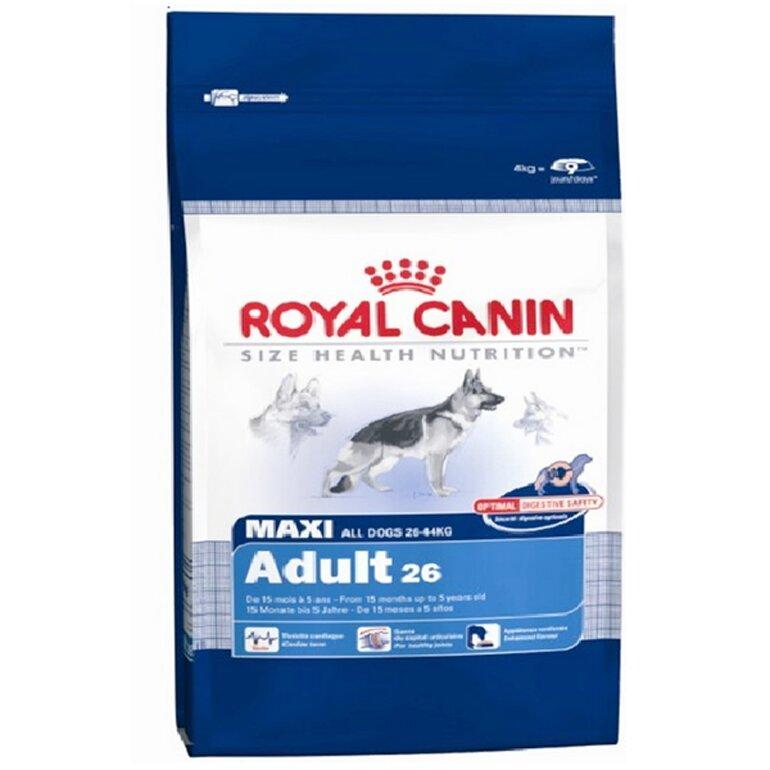 Thức ăn khô cho chó Alaska Royal Canin