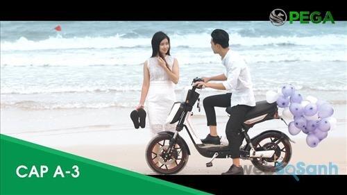 Xe điện HKbike PEGA CAP-A3