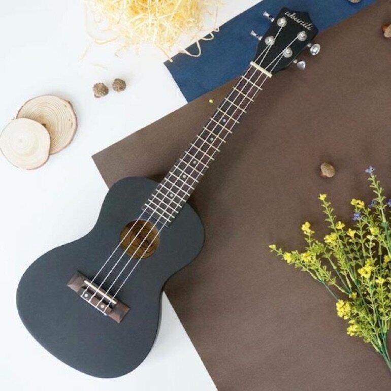Đàn Ukulele Concert rất được ưa thích ở Việt Nam