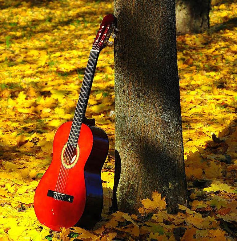 Đến với âm nhạc, đến với guitar cuộc sống của bạn sẽ trở nên vô cùng thú vị!