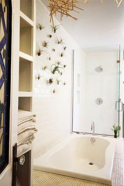 Phòng tắm thư giãn và đẹp mắt nhờ sử dụng cây cảnh 5