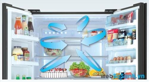 đa chiều giúp khí lạnh phân phối đều tất cả các vị trí trong tủ (nguồn: internet)