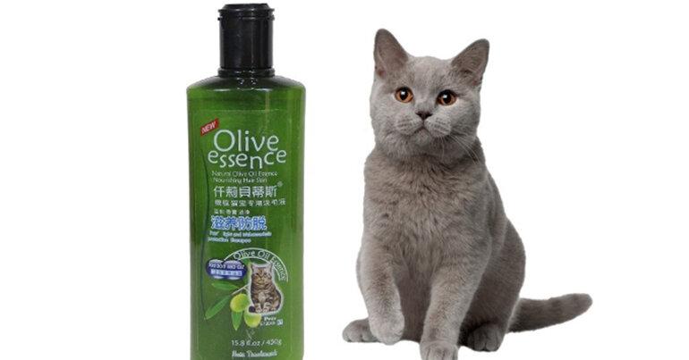 Sữa tắm Olive dành riêng cho mèo