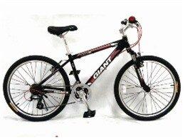 Xe đạp trẻ em MTB Giant 2012 CHASER540