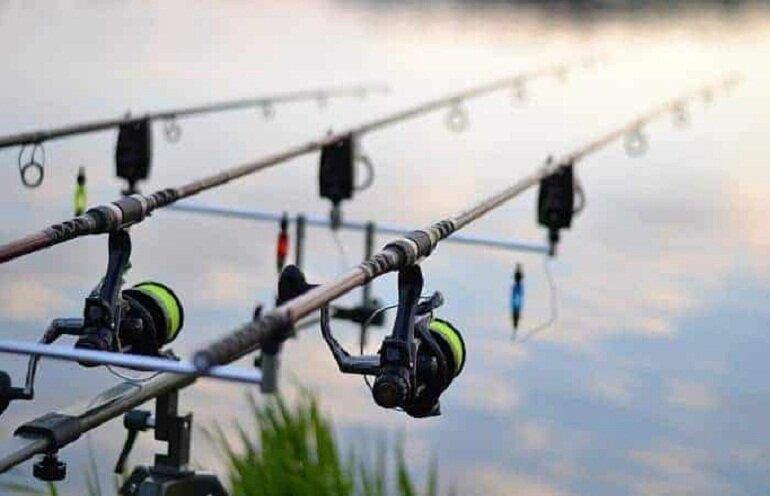 Tín hiệu phát ra từ phao câu cá giúp bạn biết cá đã cắn câu hay chưa