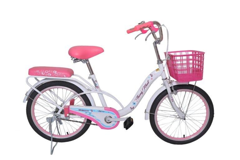 Giá xe đạp trẻ em Thống Nhất bao nhiêu tiền?