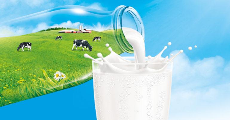 Bảng giá sữa tươi nguyên kem cập nhật mới nhất tháng 6/2019