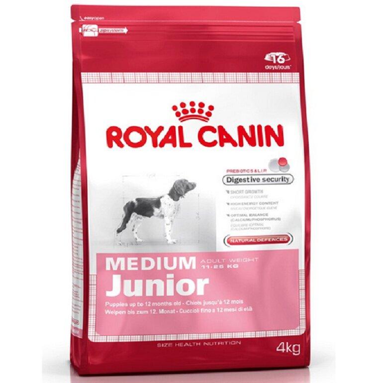 Thức ăn khô cho chó Alaska - Royal Canin