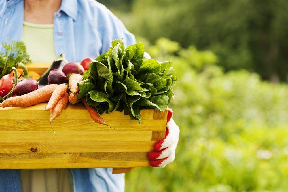 Lựa chọn địa chỉ nuôi trồng các thực phẩm hữu cơ và phân phối trực tiếp đến người tiêu dùng