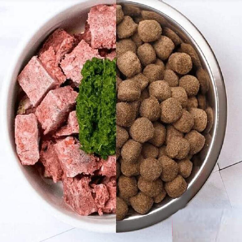 Thức ăn khô cho chó ngày càng được nhiều người nuôi lựa chọn vì tiện lợi