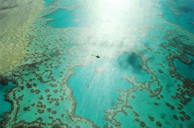"""A ride over the reef"". Whilst taking in the amazing scene of Heart Reef in the Great Barrier Reef a helicopter dived in beneath us to take a better view... Photo location: Great Barrier Reef, Australia. (Photo and caption by Wayne Pope/National Geographic Photo Contest)"