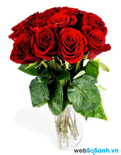 Dành tặng người phụ nữ của bạn những bó hoa...
