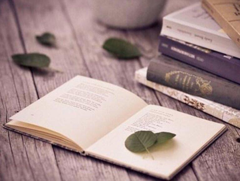 Sách văn học là gì?