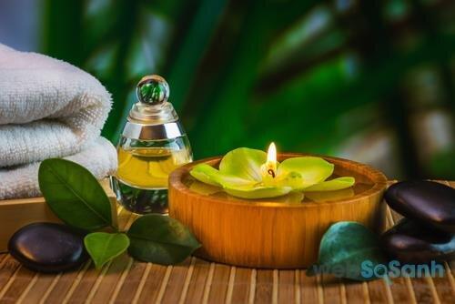Tinh dầu hoa trà không những trị mụn mà còn có tác dụng chống lão hóa da