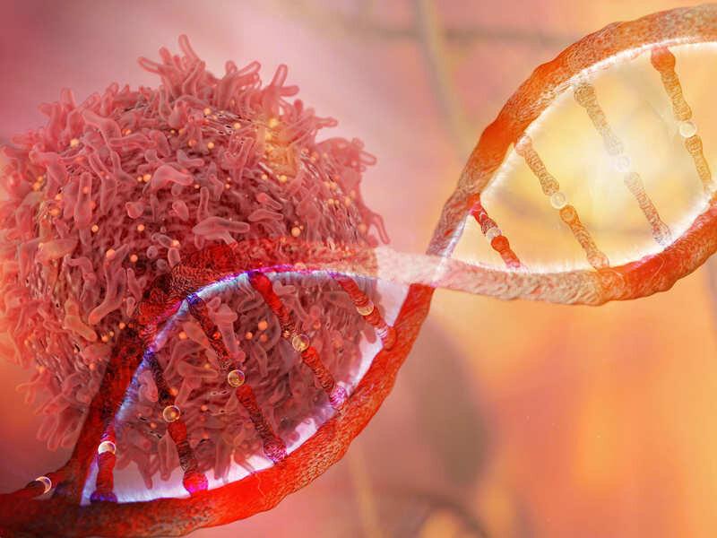 Cà chua chứa hoạt chất lycopene ngăn ngừa ung thư