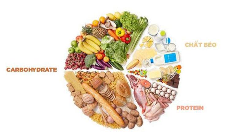 Nên cho chó con ăn các thực phẩm giàu chất béo, đạm, vitamin và tinh bột