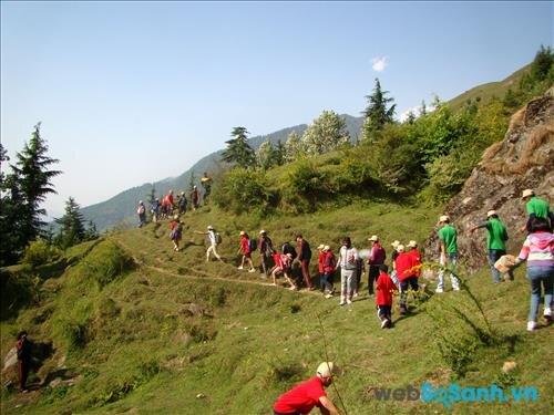 Hoạt động leo núi của trại hè