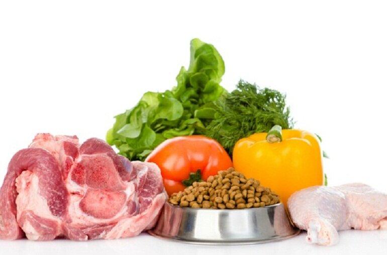 Thức ăn cho chó gồm có 2 loại chính là thức ăn khô và thức ăn tươi